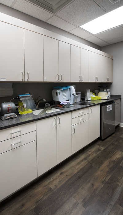 custom cabinets and counter for dental office laboratory