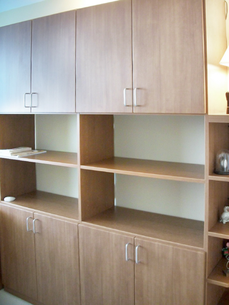 Home office bookshelves with angled shelves for reference materials
