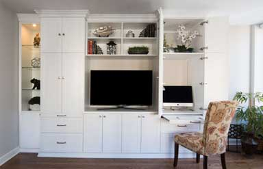 Entertainment Centers, media center wall units, and closet organizer system examples