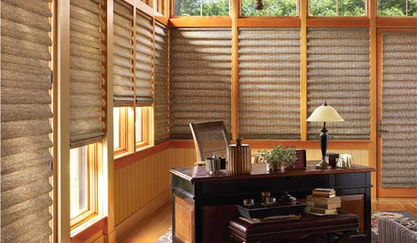get $100 rebate when you buy 4 Vignette roman shades