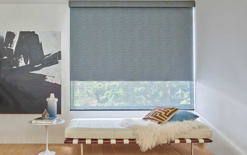 Designer Roller Shades with Duolite