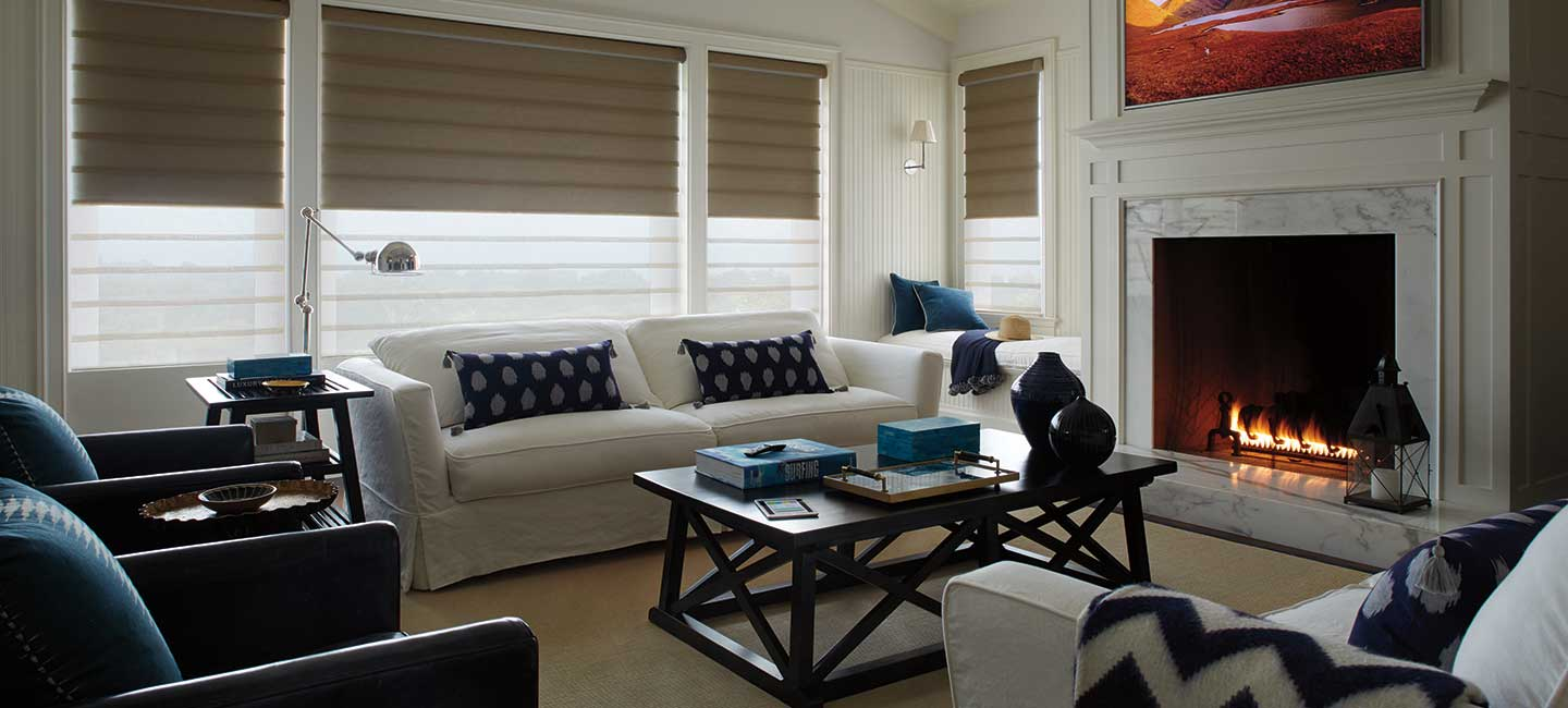 Hunter Douglas Vignette Modern Roman Shades with Duolite