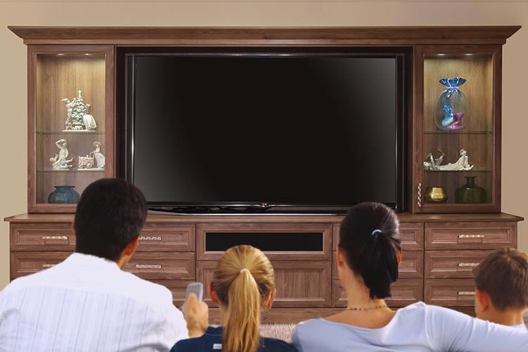 family entertainment center for large screen TV and home theater experience