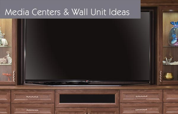 Media Center Ideas